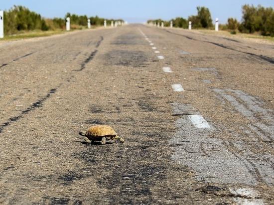 В Белгородской области земляной оползень снова сошел на дорогу