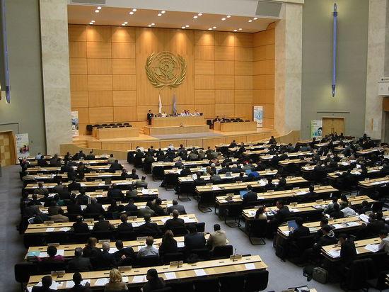 В ООН предрекли резкое сокращение численности населения Украины