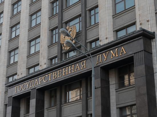Депутаты в окончательном чтении приняли закон о контрсанкциях