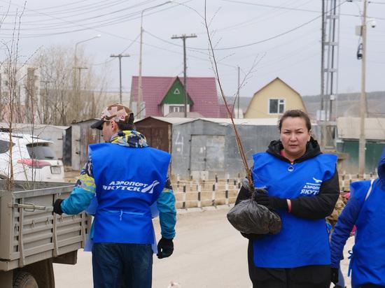 Аэропорт «Якутск» озеленяет город и устанавливает детские площадки