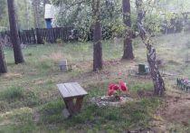 В Усолье обнаружили нелегальное кладбище домашних животных