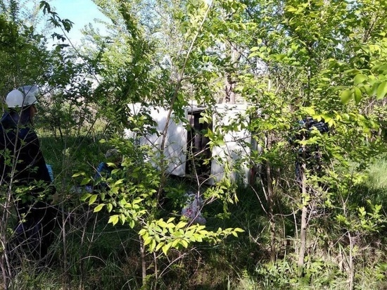 В Сызранском районе «шестерка» улетела в кювет из-за отказавших тормозов