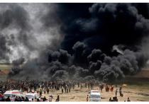 Размышления о последних событиях в Газе