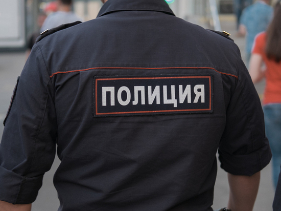 Житель Мичуринска протащил на капоте машины инспектора ДПС