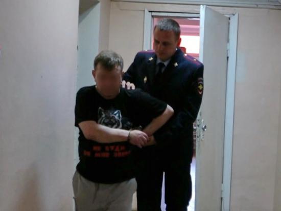 Жителю Караваево предъявлено обвинение в убийстве малолетней девочки