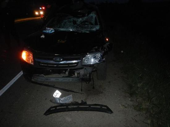 В ДТП с лосем пострадал водитель «Лады»