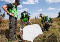 НАТО и Евросоюз присоединились к обвинению России в крушении  MH17