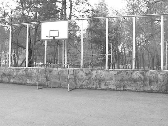 Администрация Хабаровска сохраняет спортивные площадки