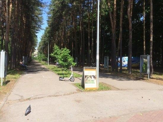 В Липецке вандалы разбили «кривые зеркала»