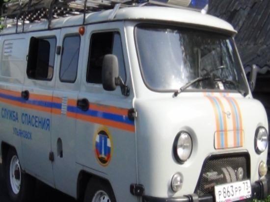В Ульяновске спасатели вернули выпавшего вороненка в гнездо
