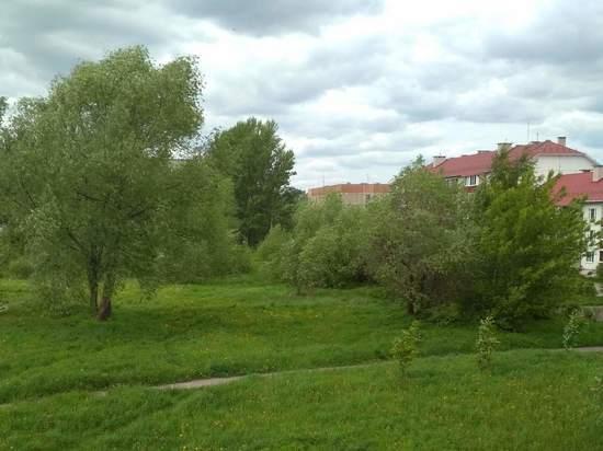 Порывистый ветер и гроза пришли с северо-запада в районы Костромской области