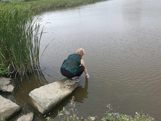 Дальнейшая судьба зловонного озера решена во Владивостоке