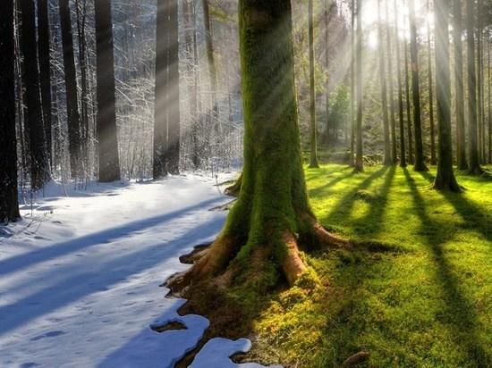 В Самарской области побит температурный рекорд по холоду 78-летней давности
