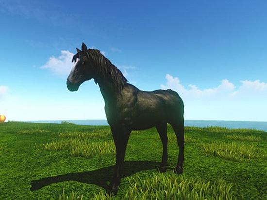 Полиция ищет хозяина молодого коня
