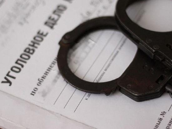 Селянина из Коношского района будут судить за убийство непунктуальной жены