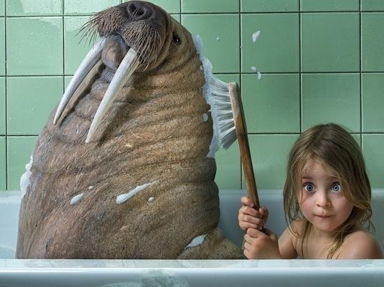 В День защиты детей в Архангельске мыть их придётся в тазиках