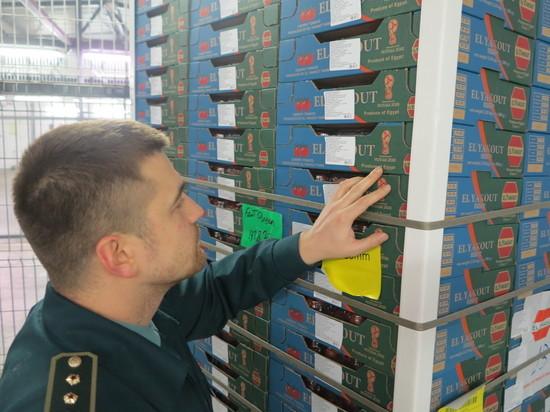 В Калининграде уничтожат более 2 тонн томатов с символикой ЧМ-2018