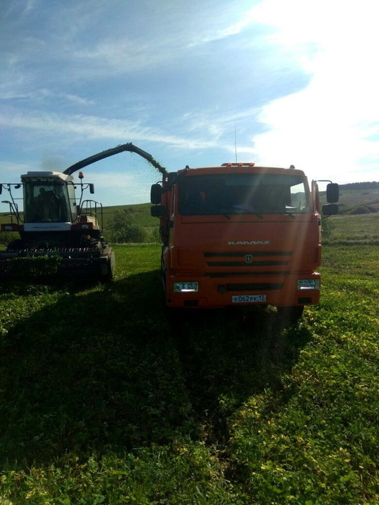 В Мордовии начали заготавливать корма
