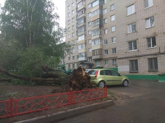 Поваленные деревья, сорванные крыши и обесточенные населенные пункты: последствия циклона в Чувашии