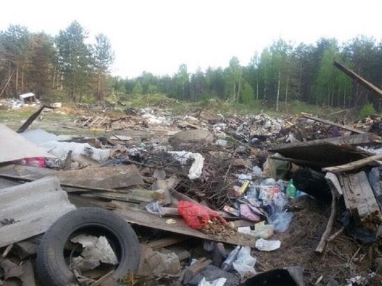 Окрестности Ледмозера превратились в сплошную свалку. ФОТО