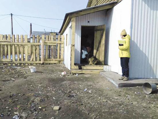 Бурятские чиновники разрешили селить людей в дома из мусора