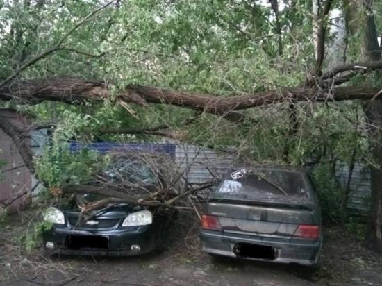 От урагана в Ульяновске пострадали четыре человека