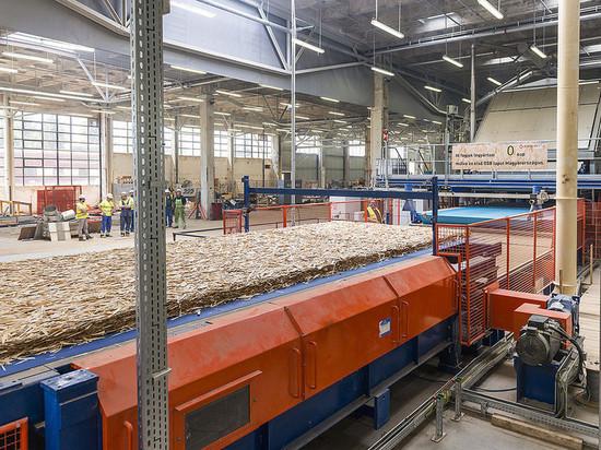 В Костромской области будут развивать глубокую переработку низкосортной древесины