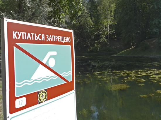 МЧС обнародовало неутешительную статистику утонувших в России