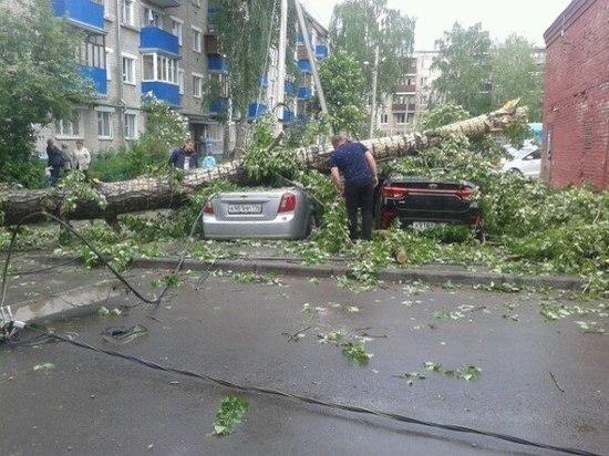 В Саранске во время прохождения циклона повреждено более 80 линий электропередач