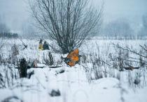СМИ назвали причину катастрофы Ан-148: пилоты «расшатали» штурвал
