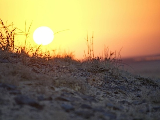 Погода нанесла удар по будущему урожаю в Татарстане