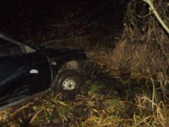 В Мордовии вазовская легковушка на большой скорости вылетела в кювет, водитель погиб