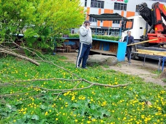Неравный бой: уличных торговцев Петрозаводска призвали бойкотировать