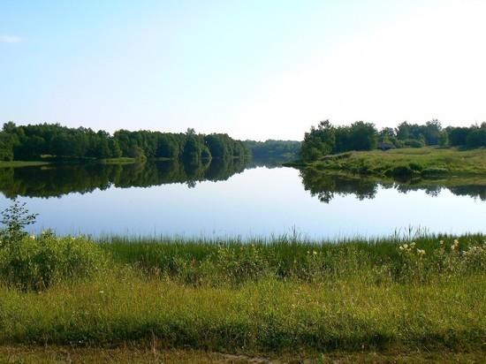 Костромичи очистят пруд в Красносельском районе