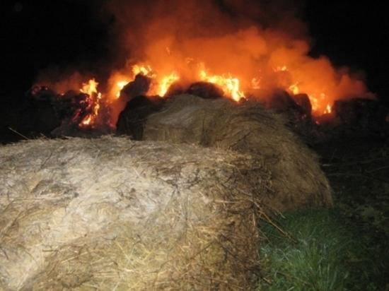 Ночью в Костромском районе горело сено на площади 100 квадратных метров