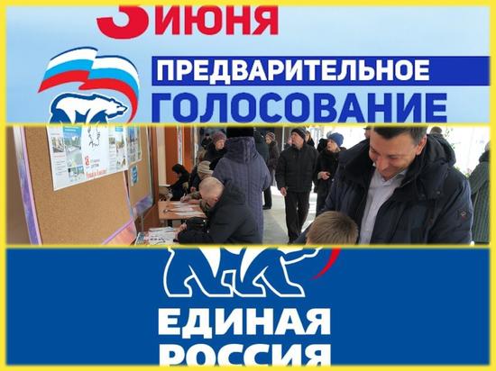Около 45 тысяч жителей региона приняли участие в праймериз