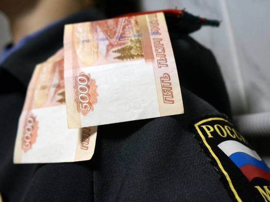 Пьяного водителя будут судить за попытку дать взятку инспектору ДПС