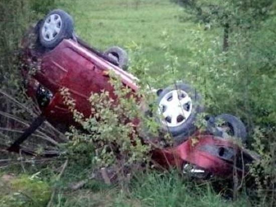 Пьяный водитель ушиб голову, опрокинувшись на машине в Архангельской области