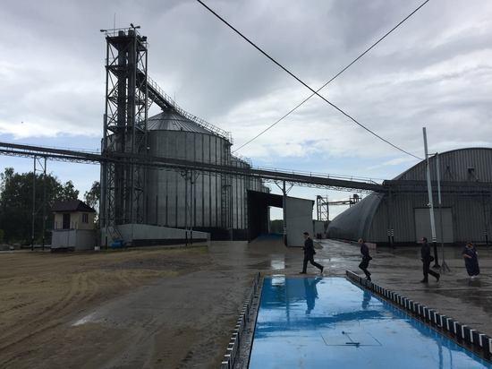 цена на зерно в тамбовской области на сегодня на элеваторах