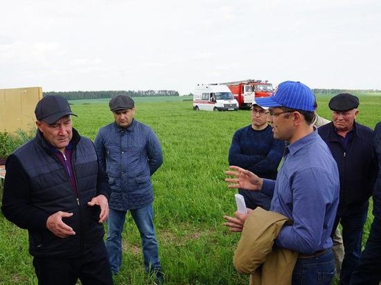 В Татарстане завершилась весенняя посевная кампания