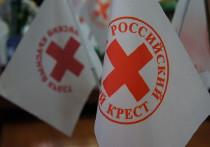 Тверское отделение Красного Креста открывает сбор для Медновского интерната