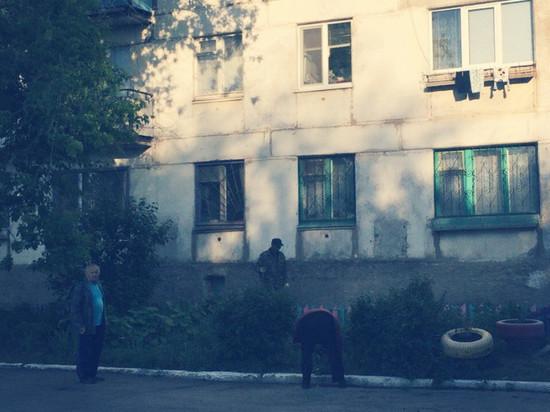 В Отрадном мужчина разрубил лопатой бездомного щенка на глазах у ребенка