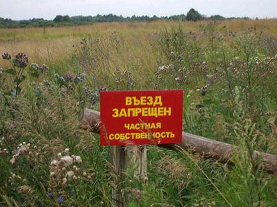 Что способствует в Воронеже самовольному строительству и захвату территорий