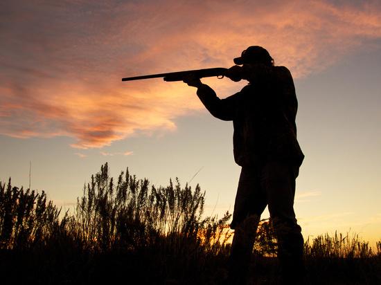 В Соль-Илецке мужчина, подстреливший косуль, попал под суд
