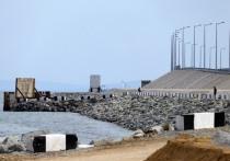 Ефремову пригрозили уголовным делом за слова про Крымский мост