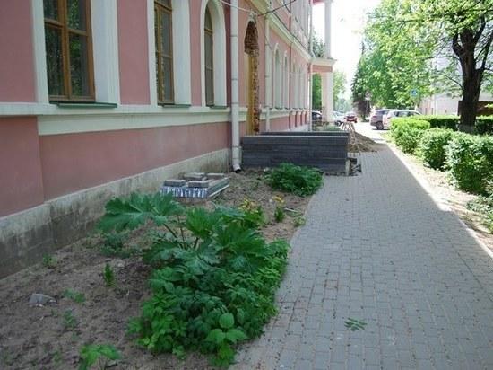 Борщевик начал захват центра Твери - он появился у императорского дворца