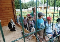 Дошкольники республики участвуют в «Живых уроках»