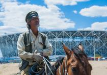 Китайский конный всадник проскакал 1600 километров, чтобы попасть в Волгоград