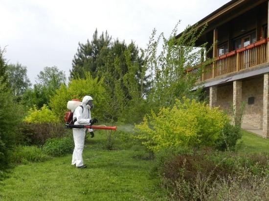 Костромских садоводов не напрасно пугают клещами и штрафами