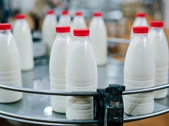 Строительство крупного молочного кластера в Тамбовской области начнется уже осенью